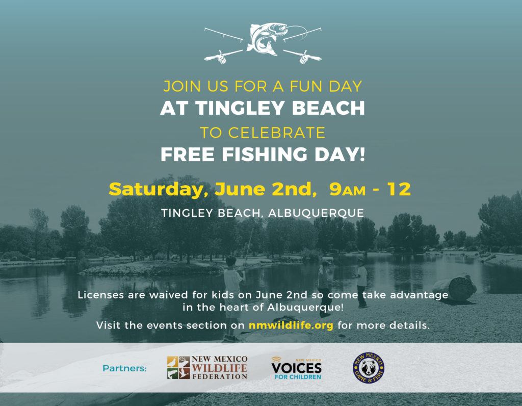 Tingley Beach Flyer-01 (1)
