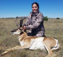 Antelope 2017  (2)